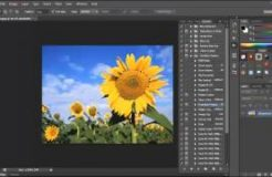 Photoshop Training Workflow Actions Vid #16